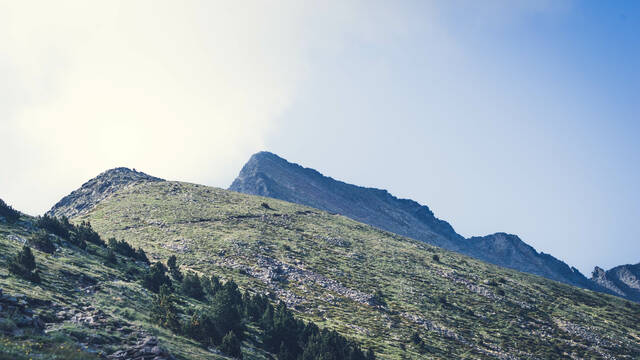 Access to the Canigou's  summit